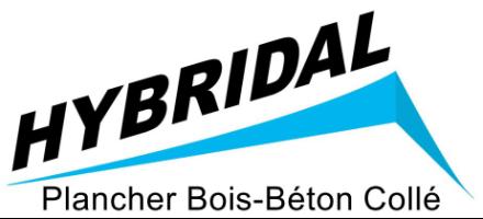 Logo hybridal